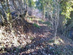 Clearing a path at the top of a bank near Stowey, 20th January 2017 (Before)